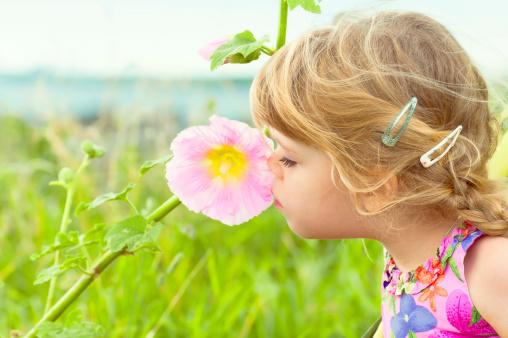 Le lait maternel, nourriture « psycho-émotionnelle » : l'univers olfactif …