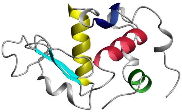 Le lait humain est riche en une molécule anti-cancéreuse (point sur HAMLET)